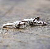 Náušnice - Vetvičky do uší - 10217100_