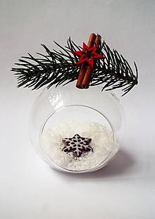 Odznaky/Brošne - Vianočná brošňa | Medovník - Hviezda - 10219286_