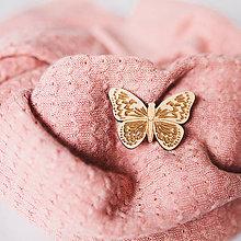 Odznaky/Brošne - motýľ ~ brošňa (bledáčik) - 10230289_