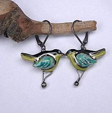 Náušnice - Keramické náušnice - Vtáčiky pestré - 10237008_