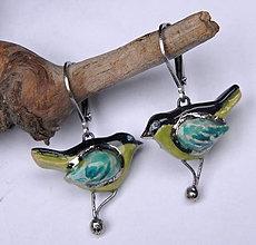Náušnice - Keramické náušnice - Vtáčiky pestré - 10237009_