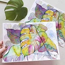 Obrazy - Zelená monstera, akvarel výtlačok (print) - 10239364_