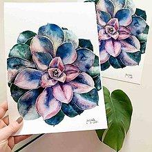 Obrazy - Sukulent II, akvarel výtlačok (print) + originál - 10239424_