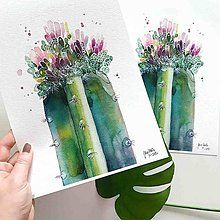 Obrazy - Rozkvitnutý kaktus, akvarel výtlačok (print - 10239550_