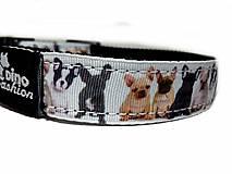 Pre zvieratká - Obojok French Bulldog - 10242196_
