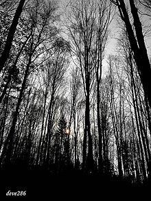 Fotografie - Tam, kde Slnko chodí spať - 10246809_