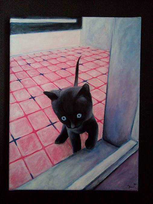 a765e72300 Mačka čierna   Pamotkin - SAShE.sk - Handmade Obrazy
