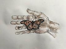 Kresby - Kúzlo v dlani - 10256228_
