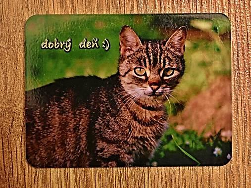 www. Wild mačičkakapucňa ametur porno