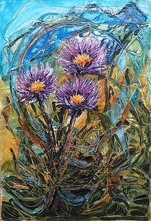 Obrazy - Kvety Tatier (Astra alpínska) - 10261953_