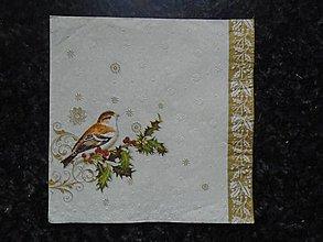 Papier - vtáčik - 10261858_