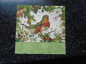 Papier - vtáčiky - 10262162_