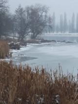 Fotografie - Zamrznuté jazero... - 10267851_