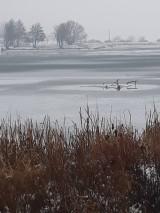 Fotografie - Zamrznuté jazero... - 10267858_