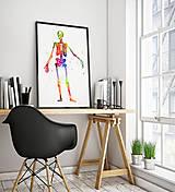 Grafika - Anatómia kostry - 10266908_