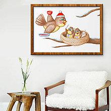 Obrázky - Vtáčia rodinka - zima - 10272349_