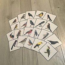 Hračky - Naše vtáky - 10282855_