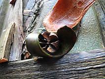 Obrazy - Zelené orechové stromy - 10288487_