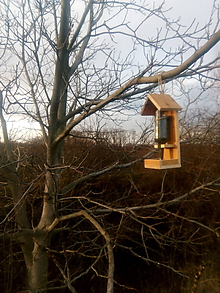 Dekorácie - záhradné krmítko pre vtáčiky - 10285605_