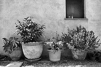 Fotografie - Sicilia 8819 >> Originálna fotografia na fine-art papieri - 10285656_