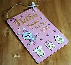 Tabuľky - Tabuľka pre bábätko s údajmi o narodení dievčatko 4 - 10290113_