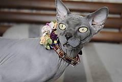 Pre zvieratká - Kožený obojok pre mačku Bastet - 10289055_