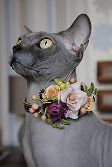 Pre zvieratká - Kožený obojok pre mačku Bastet - 10289050_