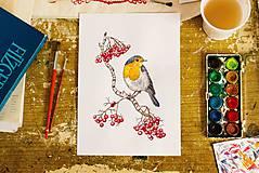 Kresby - Červenka (reprodukce autorské malby, A4) - 10295148_