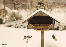 Fotografie - V záhrade sa začína zimná vtáčia hostina - 10295754_