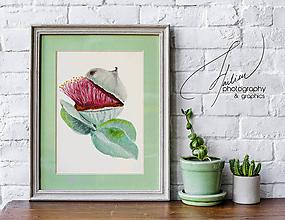 Obrazy - Art print - Eukalyptus  - 10298770_