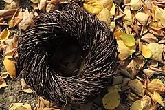 Dekorácie - Prírodný veniec Betula (Kvety) - 10301468_