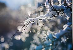 Fotografie - Zimné kúzlo - 10308874_