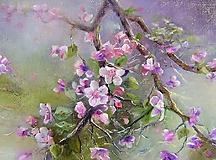 Obrazy - Jabloň-kvet - 10307193_