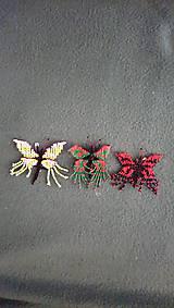 Drobnosti - Motýlik  - 10323004_