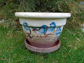Nádoby - vtáčiky - 10320735_