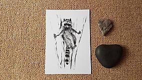 Papiernictvo - Pohľadnica: Medvedík čistotný - 10325916_