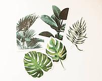 """Papier - Set nálepiek """"Tropical"""" - 10331998_"""