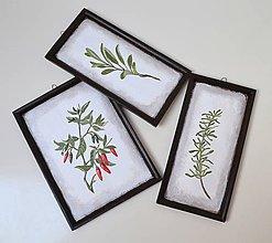 Obrázky - Obrázky-sada-Papričky a bylinky - 10332673_