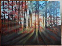 Obrazy - Prebúdzanie lesa - 10333435_