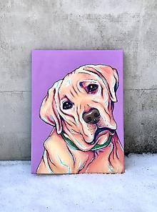 Obrazy - Labrador. - 10340432_