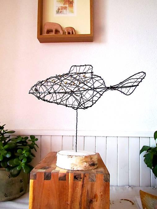 Zlatá rybka* 24 cm