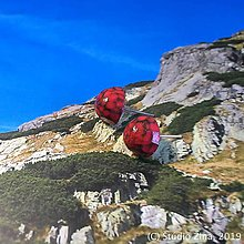 Náušnice - Červené drievka - 10345779_