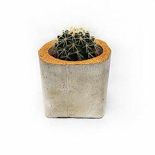 Dekorácie - Cactus pot - 10345617_