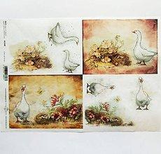 Papier - Ryžový papier na decoupage -A4-R1348 - Veľká noc, hus, húska - 10348849_