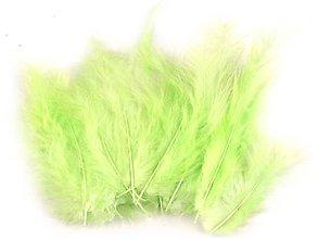 Suroviny - Pštrosie perie 20 ks (zelená najsvetlejšia) - 10351603_