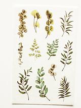 """Papier - Akvarelový set - nálepky """"Greenery II."""" (C.) - 10357292_"""