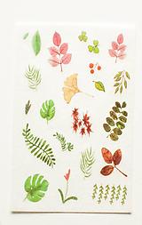 """Papier - Akvarelový set - nálepky """"Greenery II."""" (C.) - 10357299_"""
