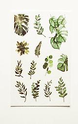 "Papier - Akvarelový set - nálepky ""Greenery II."" (E.) - 10357302_"