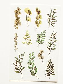 """Papier - Akvarelový set - nálepky """"Greenery II."""" - 10357292_"""