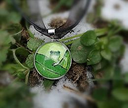 Náhrdelníky - Žabka - medailónik na želanie so zvieratkom - 10360756_